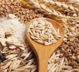 Genug Zink in der pflanzlichen Ernährung?