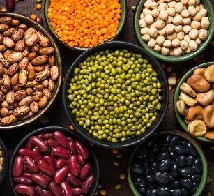 Rezepte und Faktenwissen: Proteinpower rein vegan!